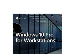 HZV-00055-Microsoft Windows 10 PRO for Workstation 64BIT only Server Grade Data Protection
