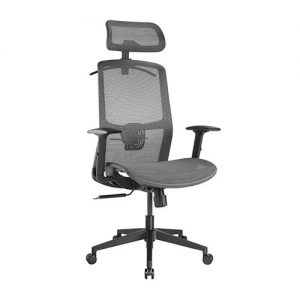 Brateck-CH05-18-Brateck Ergonomic Mesh Office Chair with Headrest (655x675x1165-1265mm) Up to 150kg  - Steel Mesh